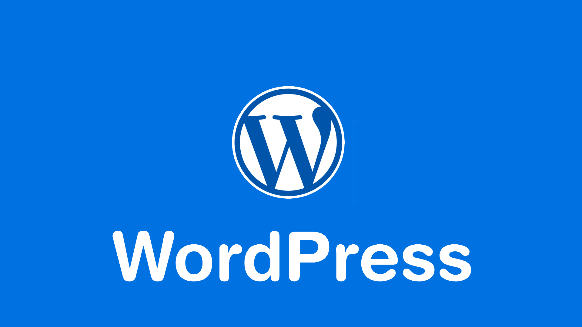 Top 7 Best WordPress Plugins